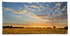 Kansas Sunflowers At Sunset Beach Towel