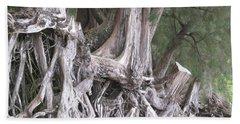 Kauai - Roots Beach Sheet