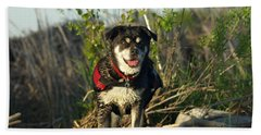 Beach Towel featuring the photograph Kayaker's Best Friend by James Peterson