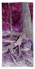 Kentucky Lake Roots  Beach Towel