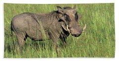 Kenya Warthog Tall Grass Masai Mara Beach Towel