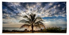 Key West Florida Lone Palm Tree  Beach Towel
