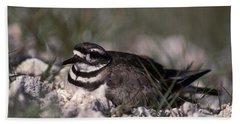 Killdeer Female Nesting Beach Towel