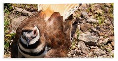 Killdeer On Its Nest Beach Sheet by Chris Flees
