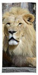King Of Beasts Beach Sheet