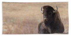 King Of The Hill At Custer State Park South Dakota Beach Towel
