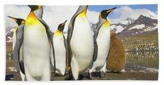 King Penguins At St Andrews Bay Beach Sheet by Yva Momatiuk and John Eastcott