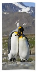 Beach Towel featuring the photograph King Penguins Courting St Andrews Bay by Konrad Wothe