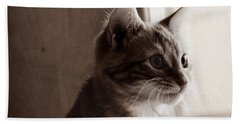 Kitten In The Light Beach Towel by Melanie Lankford Photography