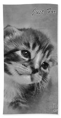 Kitten Just For You Beach Sheet by Terri Waters