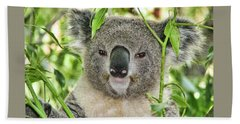Koala Bear Beach Towel
