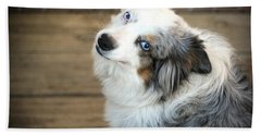 Kora The Australian Shepherd Beach Towel
