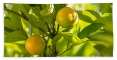 Kumquats Beach Towel