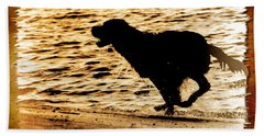 Beach Sheet featuring the photograph Labrador Silhouette by Eleanor Abramson
