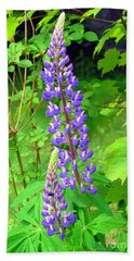 Lady Lupine Beach Towel