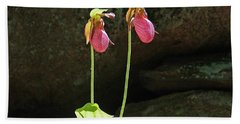 Lady Slippers At Moore State Park 5 Beach Towel