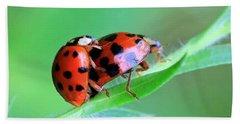 Ladybug And Gentlemanbug Beach Towel