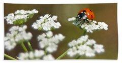 Ladybug In White Beach Sheet