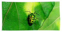 Ladybug Beach Towel by Ramabhadran Thirupattur