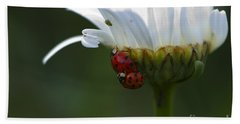 Ladybugs On Shasta Daisy Beach Towel by Sharon Talson