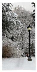 Lamp Post In Winter Beach Towel