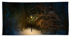 Beach Towel featuring the photograph Lantern In The Wood by Michael Arend