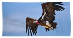 Lappetfaced Vulture Beach Towel by Johan Swanepoel
