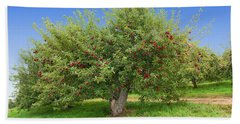 Large Apple Tree Beach Towel