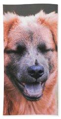 Laughing Dog Beach Sheet by Belinda Lee