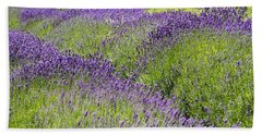 Lavender Day Beach Sheet