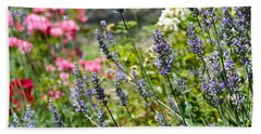 Lavender In Bloom Beach Sheet