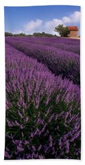 Lavender In Provence Beach Towel