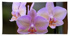 Lavender Orchid Beach Sheet