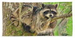 Lazy Day Raccoon Beach Towel by Jennie Marie Schell
