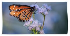 8x10 Metal - Queen Butterfly Beach Sheet by Tam Ryan
