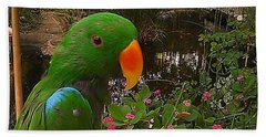 Beach Towel featuring the photograph Le Parrot by Chris Tarpening