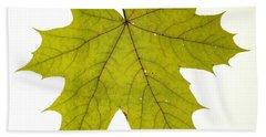 Leaf 1 Beach Sheet