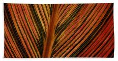 Cannas Plant Leaf Closeup Beach Towel