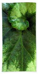 Leafy Greens Beach Sheet
