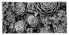 Leaves And Succulents Beach Towel