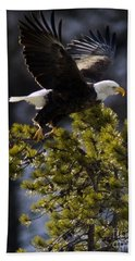 Beach Towel featuring the photograph Leaving The Tree by J L Woody Wooden