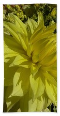 Lemon Yellow Dahlia  Beach Sheet by Susan Garren