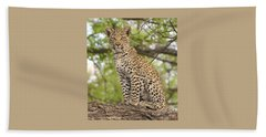 Leopard Cub Gaze Beach Sheet