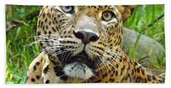 Beach Towel featuring the photograph Leopard Face by Clare Bevan