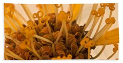 Beach Towel featuring the photograph Leopards Bane Flower Macro by Sandra Foster