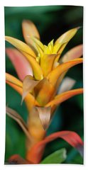 Less Than Perfect - Bromeliad Beach Towel