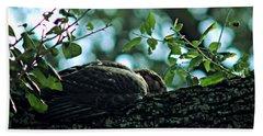 Let Sleeping Hawks Lie Beach Towel by Greg Allore