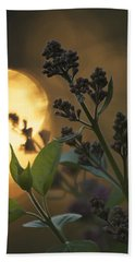 Lilacs At Sunset Beach Towel by Penny Meyers
