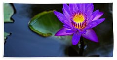Beach Towel featuring the photograph Lily Awakens by Dave Files
