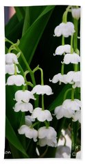Lily Of The Valley Beach Sheet by Lainie Wrightson